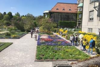 Botanischer Garten München 1