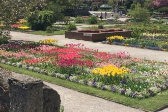 Botanischer Garten München 3
