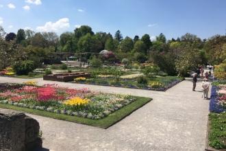 Botanischer Garten München 2