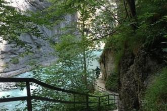 Aareschlucht Treppe