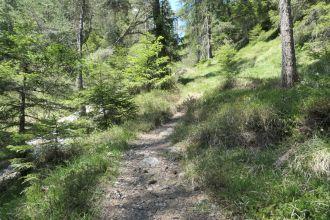 Wanderung-Alvenau