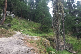 UNESCO-Naturerbe-Aletschgebiet