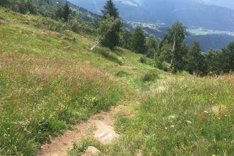 Weg-hinunter-nach-Bellwald