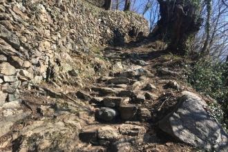 Monte-Carasso-Weg-1