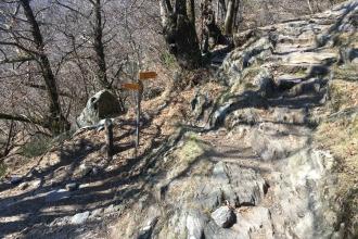 Monte-Carasso-Weg-2