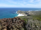 Cape of Good Hope 3