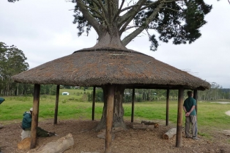 Knysna Elefanten Park  9