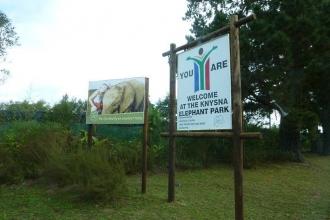 Knysna Elefanten Park 1