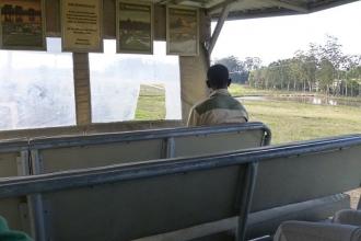 Knysna Elephant Park  2