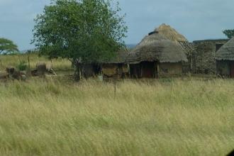 Swaziland-Hütten