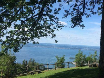 Panoramablick vom Fünfländerblick auf den Bodensee