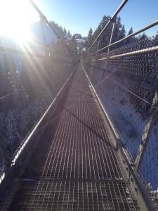 Hängebrücke oberhalb Sattel (SZ)