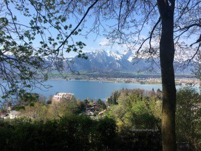 Aussicht auf den Thunersee